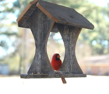 Re-purposed Cedar Bird Feeder