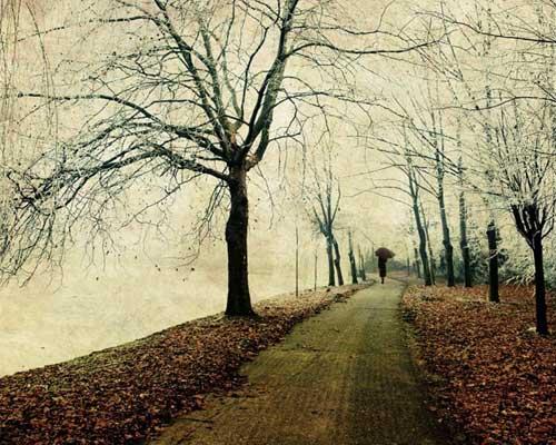 Winter Scene Sidewalk Photography