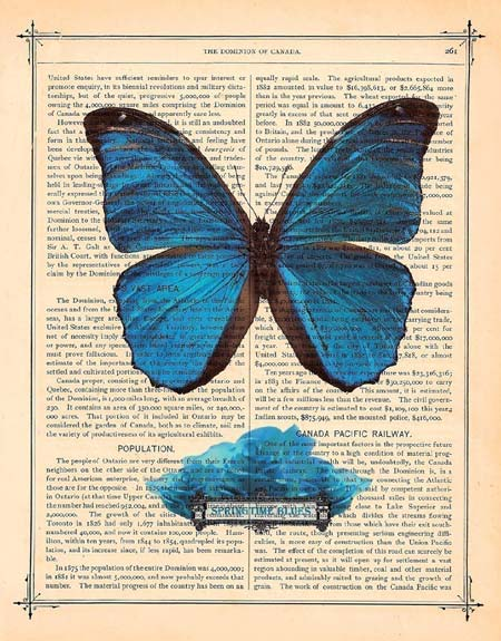 Blue Butterfly Book Print