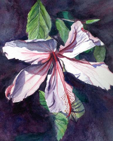 Watercolor Hibiscus Print